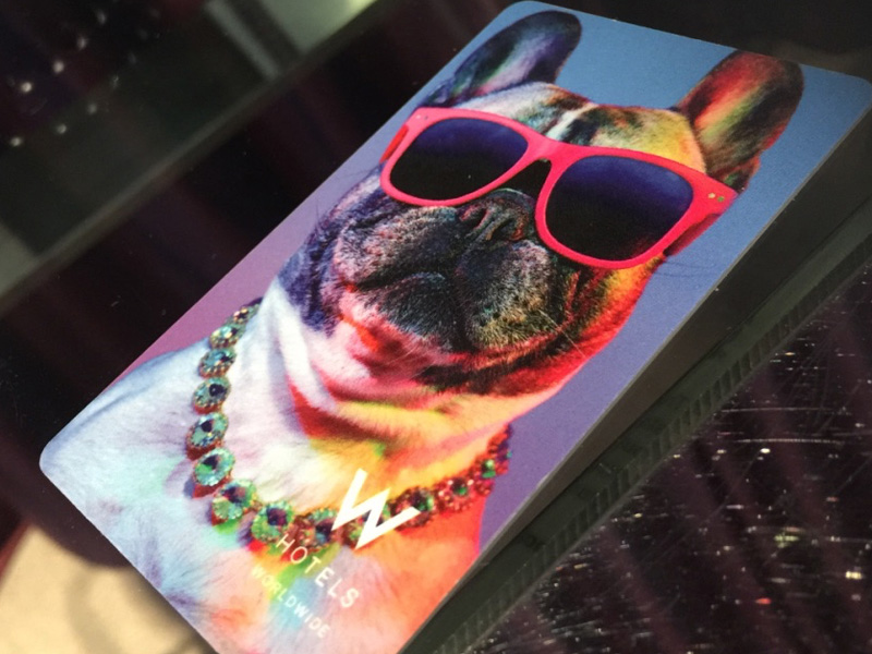 W-BANKGOK-Hotel-room-plastic-key-card-with-pug-dog-and-glasses
